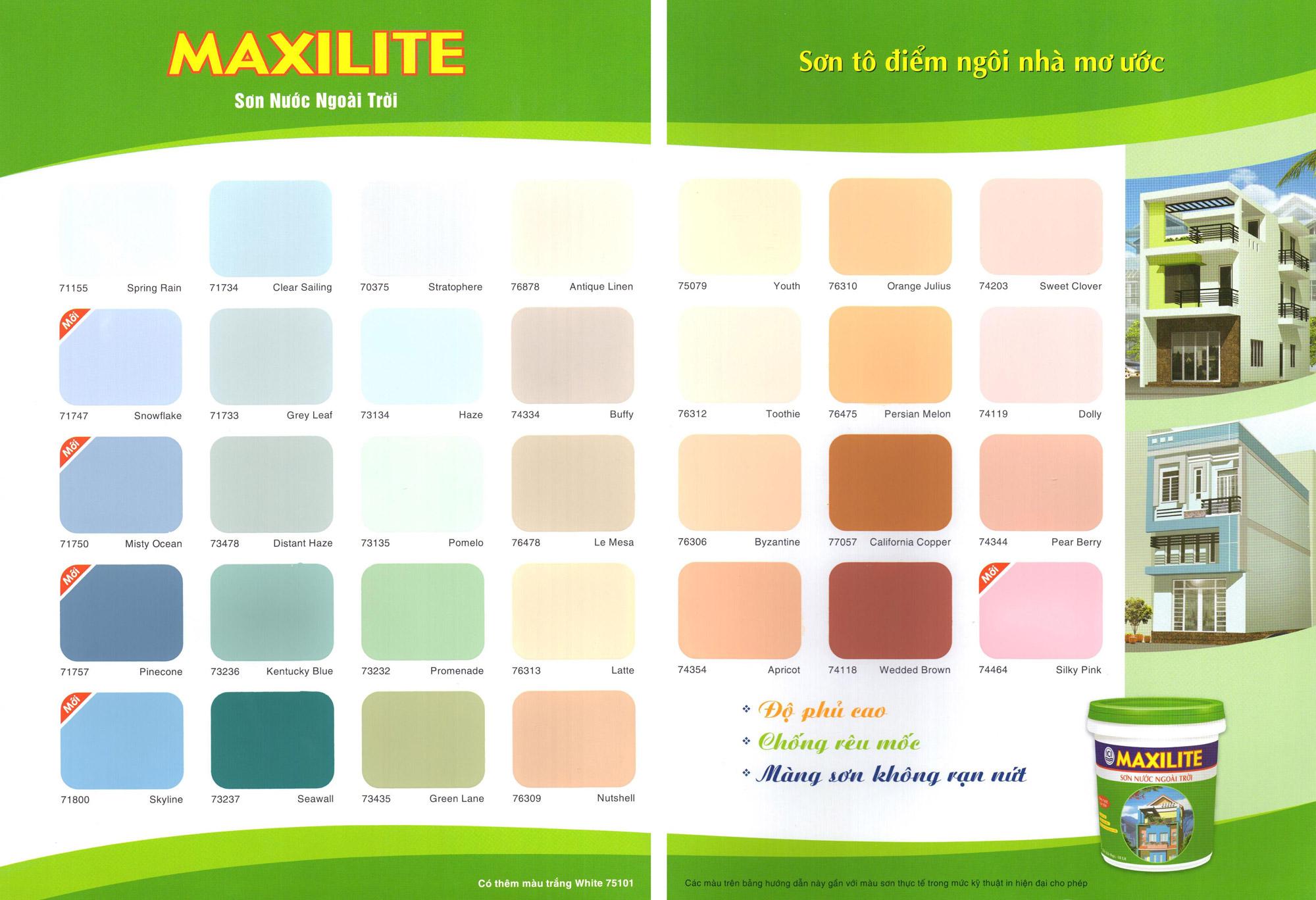 Các câu hỏi và cách chọn màu sắc sơn sao cho phù hợp với ngôi nhà và tuổi gia chủ ?
